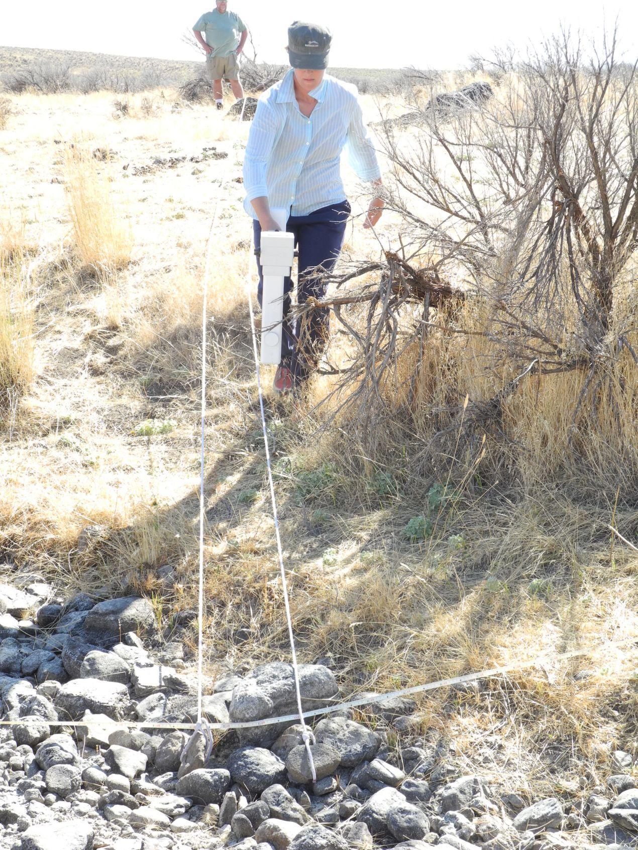 Ryegrass Creek Geophysical Survey, Elmore County. Idaho